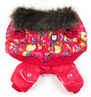 1 Pc Bear Print Dog Clothes Pet Cosplay Coat Clothes Dog Puppy New Clothing