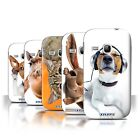 Stuff4 Hülle/Case/Backcover für Samsung Galaxy Young/Lustige Tiere