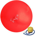 """Exercise Ball For Yoga And Pilates Red/Blue With Pump 65""""cm"""