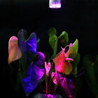 Practical 680LM Plant 5W LED Photosynthesis Growth Light Garden Hydroponic Lamp