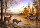 Canvas Print Oil painting Picture Animals Deer in the forest lake on canvas L714