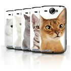 Cat Breeds Phone Case/Cover for HTC Wildfire/G8