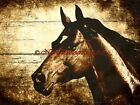 Rustic Horse Original Signed Handmade Matted Picture (Choose Color) A807