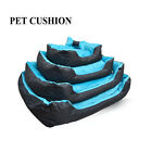 High Quality Thick Padding Dog Bed Blue Black with Free Toy