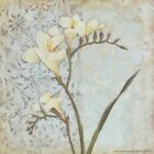 "ST7331 White Flower Stephanie Marrott 6""x6"" framed or unframed print art"