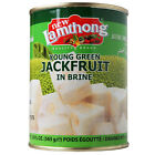 NEW LAMTHONG YOUNG GREEN JACKFRUIT IN BRINE - 24 x 565G TINS