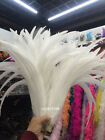 Beautiful 10-100 pcs 16-18 inches / 40-45 cm natural white rooster tail feathers