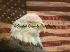 Bald Eagle on Rustic American Flag Original Signed Matted Picture Photo A213