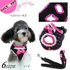 Onlypet Princess Love Heart Cat Dog Harness Leash Set