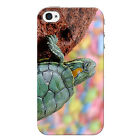 Turtle Case For Apple iPhone 4 Wildlife Marine Life Phone Cover