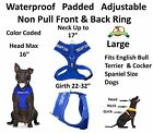 THERAPY DOG Blue Pet Vest Harness Non Pull Front Back Ring Padded Waterproof New