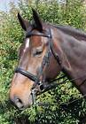 Voyager By Vespucci Plain Raised Weymouth Bridle with Leather Reins and Brado...