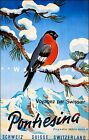 Switzerland Pontresina 1952 Vintage Poster Print Swiss Airline Winter Travel