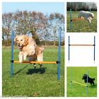 Dog Agility Hurdle | Choice Of Quantity For Dogs Agility Training
