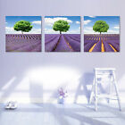 Modern Wall Home Deco Art Abstract Lavender Scenery Oil Painting On Canvas Print