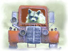 Raccoon Old Red Truck Country Baby Room Art Kids Home Decor Matted Picture A184