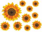 Sunflower Decals Car Stickers Graphics Nursery Wall Window Decorations Art