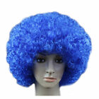 US Men Lady Clown Afro Hair Football Fan Costume Cosplay Adult Child Curly Wigs