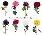 8 colours best quality single head Garden Rose for events and decoration