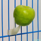 3Pcs White Small Large Size Food Holder For bird Set On The Cage feeder supplies
