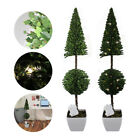 LED Topiary Light Plant Bush 2 x Pre Lit Potted Garden Ball Indoor Outdoor Patio
