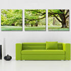 New Art Oil Painting Scenery Flower Modern Wall Picture Print On Canvas No Frame