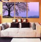 Art Oil Painting Modern Wall Deco Flower Scenery Picture Print On Canvas NoFrame