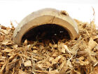 Snake Hide, Natural Housing for Enclosure, Tank, Vivarium, Terrarium, Accessory