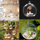 Succulent Style Hanging Glass Bauble Sphere Ball Candle Tea Light Holder DIY