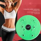 Household Twist Waist Torsion Disc Board Magnet Aerobic Foot Exercise Board YJ