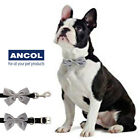 Ancol Grey Bow Tie Dog Collar Puppy Black Velvet Xmas Gift Shades Lead