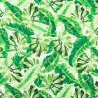 Tropical Green Leaf Jungle Leaves Big Green Leaf 100% Cotton Fabric a4/25