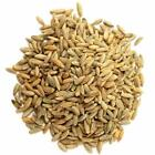 Organic Rye Berries, 1-50 lbs - Whole Wheat Grain, Non-GMO, Kosher, Raw