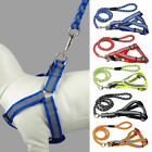 Step-in Safety Nylon Reflective Dog Puppy Adjustable Harness Leads Leash Set UK