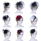Lady Top Net Mesh Birdcage Veil Feather Hairpin Hat Hair Clip for Wedding Party