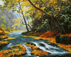 Various Art Paint By Number Kit DIY Acrylic Oil Painting On Canvas Linen Decor