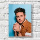 Niall Horan Poster A4 NEW Too Much To Ask 1D Sexy Hot Hunk
