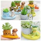 Plants Pot Succulent Flower Planter Animal Flowerpot Outdoor Indoor Garden Decor