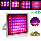 12/ 40 /60 /100W LED Grow Light Square Lamp Red Blue Light Hydro Indoor Flowers