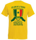 Senegal  WM 2018 Kinder n-18 GE T-Shirt Trikot Fußball Perfect
