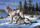 Winter snow wolves Oil painting HD Printed on canvas L875