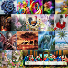 DIY 5D Diamond Painting Embroidery Cross Craft Stitch Kit Home Wall Decor+Tools