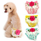 Pet Dog's Female Puppy Sweet Flower Sanitary Panty Lace Shorts Diaper Underwear
