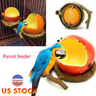 Fruit Shaped Birds Feeder Pet Feeders Container Drinking Bowls Bird Supplies