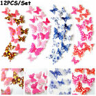 Home Decorations Kids Room Decor 3d Butterfly Stickers Wall Art Mural Decals
