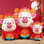 2019 NEW YEAR Chinese Zodiac Mascot Wealth Plush Pig Doll Toy Spring Festival