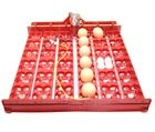 Incubator 144-36 Egg Turner Tray with Motor 12, 110, 220 Volt automatic