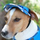 Playapup Dog Visor