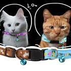 Pet Cat Dog Collar Protection Neck Ring Anti Fleas Tick Mite Louse Adjustable