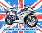 TRIUMPH DAYTONA MOTORCYCLE MOTORBIKE METAL SIGN TIN PLAQUE OTHERS ARE LISTED 628 €8.03 EUR on eBay
